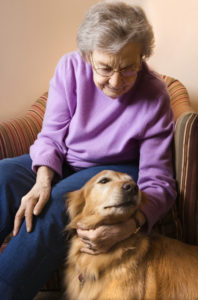 Minnesota Elder Care Glossary of Terms